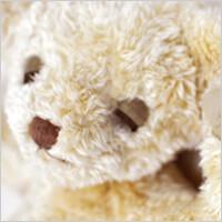 メモリアルベア nenne(ねんね):生まれた時の身長と体重でお仕立てするオーダーメイドテディベアの写真