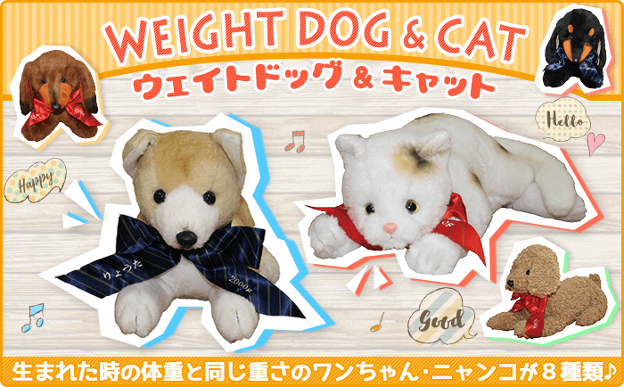 ウェイトドッグ&キャット:生まれた時の体重と同じ重さのワンちゃん・ニャンコが勢揃い!の写真
